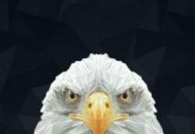 eagle bet, Темирлан Камалов